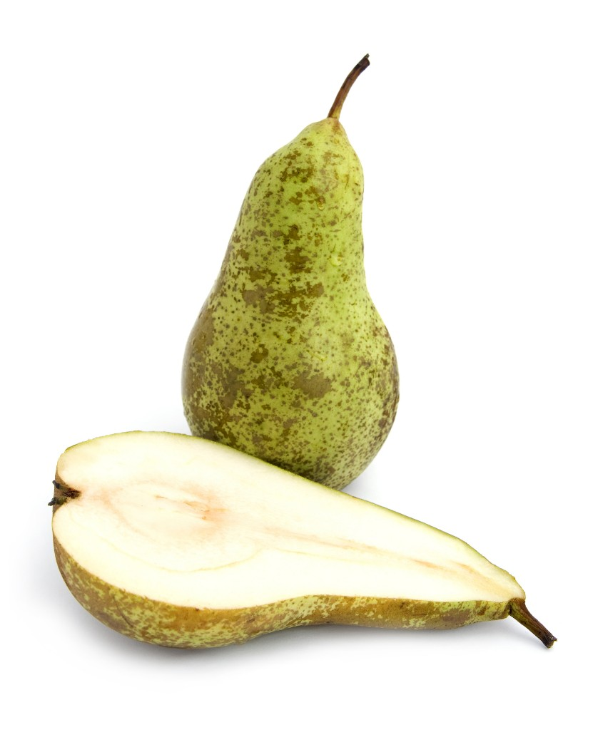 conference-pear-fruit