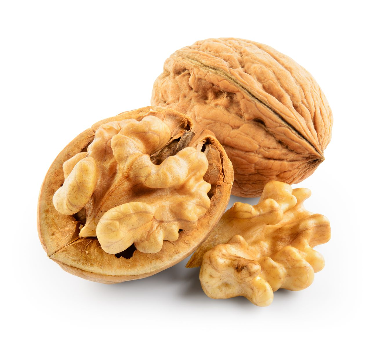 walnut-nut